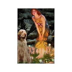 Fairies/ Italian Spinone Rectangle Magnet (100 pac