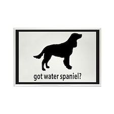 Got Water Spaniel? Rectangle Magnet
