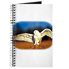 Unique Barn owl Journal