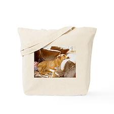 JUBA LEE RIDGEBACK Tote Bag