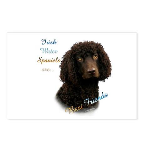 Water Spaniel Best Friend 1 Postcards (Package of