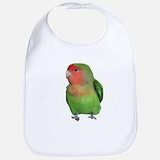 Peach-faced Lovebird Bib