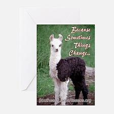 SELR Llama Greeting Cards (Pk of 10)