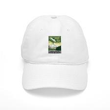 Lassen Volcanic National Park Baseball Cap