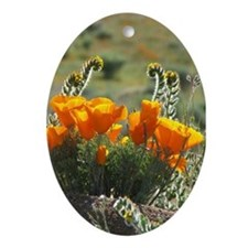 Helaine's Glowing Poppies Oval Ornament