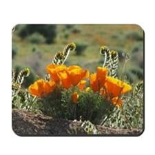 Helaine's Glowing Poppies Mousepad