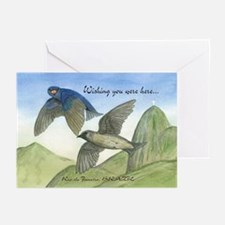 Purple martins Holiday Cards (Pk of 20)