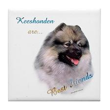 Keeshond Best Friend 1 Tile Coaster