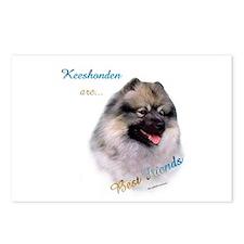 Keeshond Best Friend 1 Postcards (Package of 8)