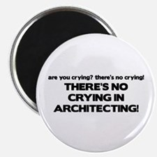 There's No Crying in Architecting Magnet
