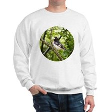 Grosbeak Sweatshirt