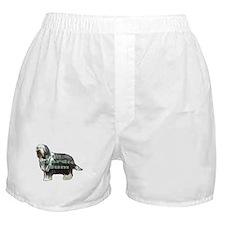 beardie bum Boxer Shorts