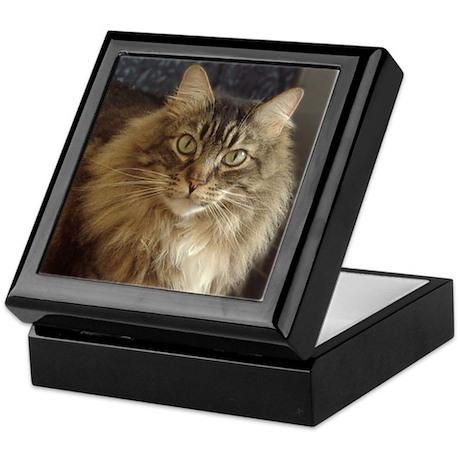 Maine Coon Cat Keepsake Box