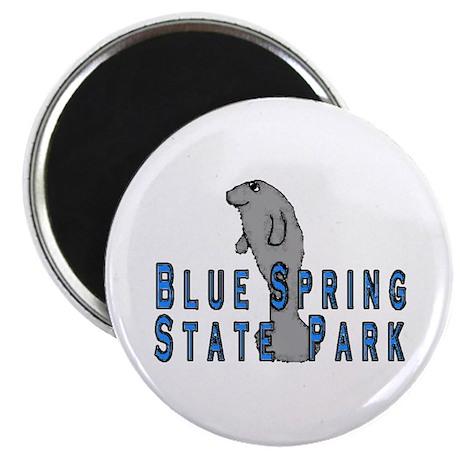 Blue Spring State Park Manate Magnet