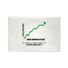 About the Environment? Rectangle Magnet