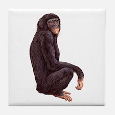 Bonobo Pygmy Chimpanzee Tile Coaster