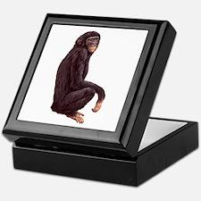 Bonobo Pygmy Chimpanzee Keepsake Box