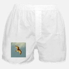 Gull in Flight, Eucla WA Boxer Shorts