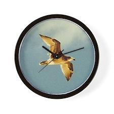Gull in Flight, Eucla WA Wall Clock