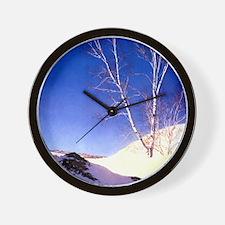 White Birches Wall Clock