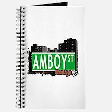 AMBOY STREET,BROOKLYN, NYC Journal