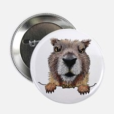"Yellow-bellied Marmot 2.25"" Button"