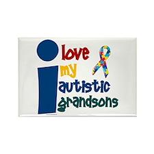 I Love My Autistic Grandsons 1 Rectangle Magnet (1