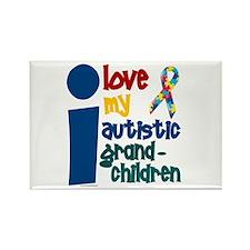 I Love My Autistic Grandchildren 1 Rectangle Magne