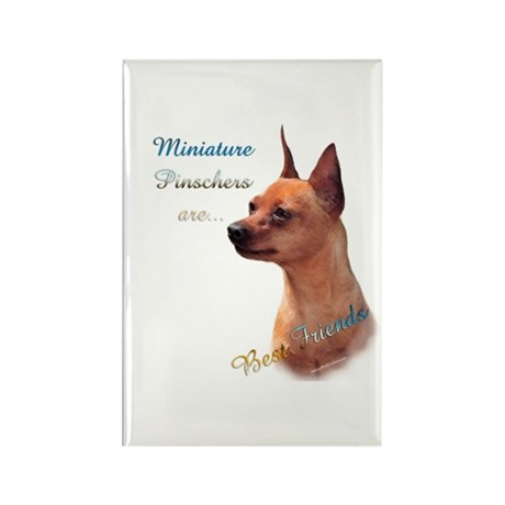 Min Pin Best Friend 1 Rectangle Magnet (100 pack)