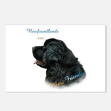 Newfie Best Friend 1 Postcards (Package of 8)