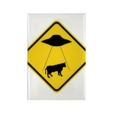 Abduction Zone Rectangle Magnet