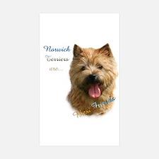 Norwich Best Friend 1 Rectangle Sticker 10 pk)