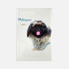 Pekingese Best Friend 1 Rectangle Magnet