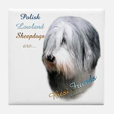 Lowland Best Friend 1 Tile Coaster
