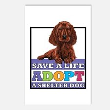 Adopt a Setter Postcards (Package of 8)