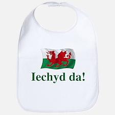 Wales Iechyd da Bib