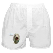 Spinone Best Friend 1 Boxer Shorts