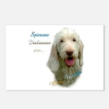 Spinone Best Friend 1 Postcards (Package of 8)