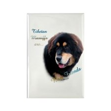 Tibetan Mastiff Best Friend 1 Rectangle Magnet (10
