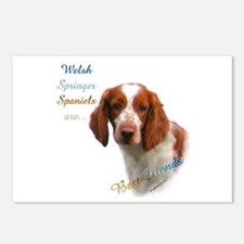 Welsh Springer Best Friend 1 Postcards (Package of
