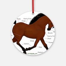 Bay Horse Anatomy Chart Ornament (Round)