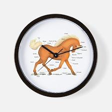 Gold Palomino Horse Anatomy Chart Wall Clock