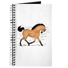 Buckskin Dun Horse Anatomy Chart Journal