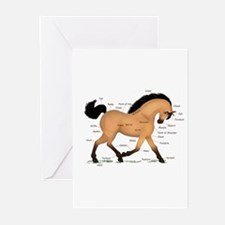 Buckskin Dun Horse Anatomy Chart Greeting Cards (P