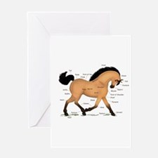 Buckskin Dun Horse Anatomy Chart Greeting Card