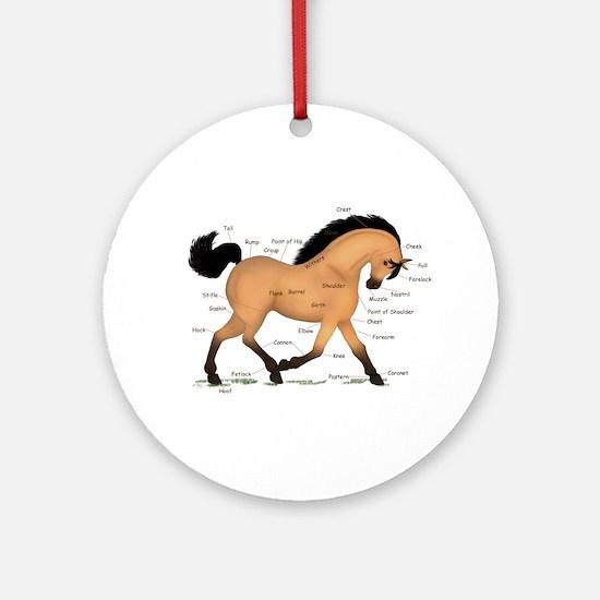 Buckskin Dun Horse Anatomy Chart Ornament (Round)