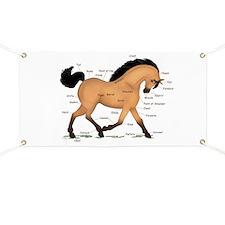 Buckskin Dun Horse Anatomy Chart Banner