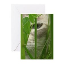 Cat in Grass Greeting Cards (Pk of 10)
