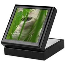 Cat in Grass Keepsake Box