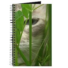 Cat in Grass Journal